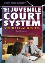 The Juvenile Court System: Your Legal Rights