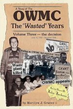 The Owmithe Wasted Years - Volume Three: The Decision