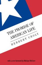 The Promise of American Life: Imprisonment in the World