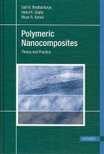Polymeric Nanocomposites: Theory and Practice