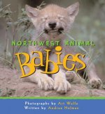 Northwest Animal Babies