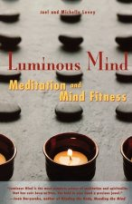 Luminous Mind: Meditation and Mind Fitness