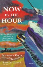 Now Is the Hour: Native American Prophecies & Guidance for Earth Changes