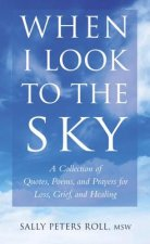 When I Look to the Sky: A Collection of Quotes, Poems, Prayers for Loss, Grief and Healing