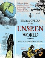 Encyclopedia of the Unseen World: The Ultimate Guide to Apparitions, Death Bed Visions, Mediums, Shadow People, Wandering Spirits, and Much, Much More