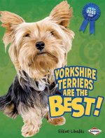 Yorkshire Terriers Are the Best!