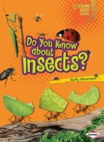 Do You Know about Insects?