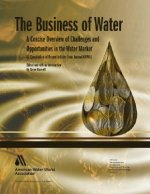 The Business of Water: A Concise Overview of Challenges and Opportunities in the Water Market