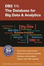 DB2 11: The Database for Big Data & Analytics