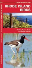Rhode Island Birds: A Folding Pocket Guide to Familiar Species