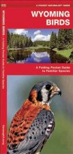 Wyoming Birds: A Folding Pocket Guide to Familiar Species