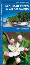 Michigan Trees & Wildflowers: An Introduction to Familiar Species