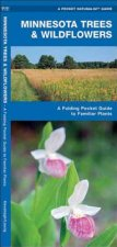Minnesota Trees & Wildflowers: An Introduction to Familiar Species