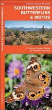 Southwestern Butterflies: An Introduction to Familiar Species
