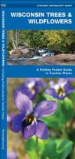Wisconsin Trees & Wildflowers: An Introduction to Familiar Species