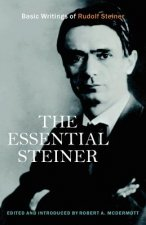 The Essential Steiner: Basic Writings of Rudolf Steiner