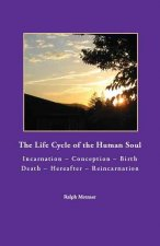 The Life Cycle of the Human Soul Incarnation - Conception - Birth - Death - Hererafter - Reincarnation