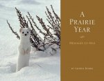 A Prairie Year: Messages to Max