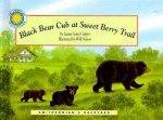 Black Bear Cub at Sweet Berry Trail