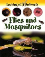 Flies and Mosquitoes