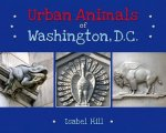 Urban Animals of Washington D.C.