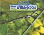 Hidden Walkingsticks