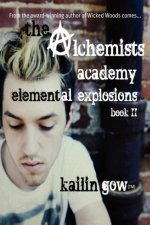 The Alchemists Academy Book 2: Elemental Explosions