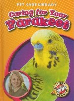Caring for Your Parakeet