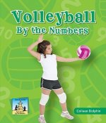 Volleyball by the Numbers