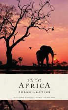 Into Africa: Hardcover Ruled Journal