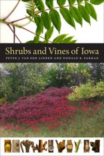 Shrubs and Vines of Iowa