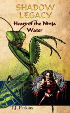 Heart of the Ninja - Water