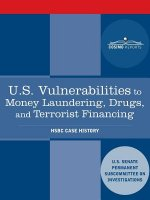 U.S. Vulnerabilities to Money Laundering, Drugs, and Terrorist Financing: Hsbc Case History