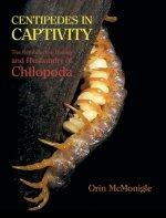 Centipedes in Captivity