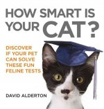 How Smart Is Your Cat?
