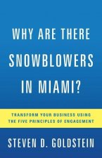 Why Are There Snowblowers in Miami?: Transform Your Business Using the Five Principles of Engagement
