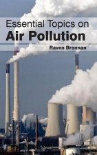 Essential Topics on Air Pollution