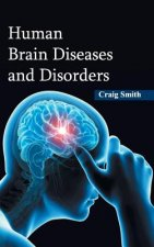 Human Brain Diseases and Disorders