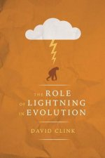 The Role of Lightning in Evolution
