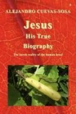 Jesus His True Biography