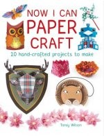 Now I Can Paper Craft: 20 Hand-Crafted Projects to Make