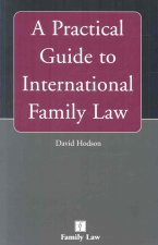 A Practical Guide to International Family Law