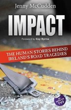 Impact: The Human Stories Behind Ireland's Road Tragedies