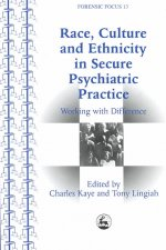 Race, Culture and Ethnicity in Secure Psychiatric Practice: Working with Difference