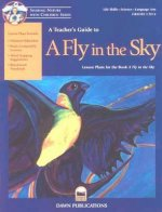 A Teacher's Guide to a Fly in the Sky
