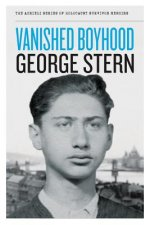 Vanished Boyhood