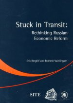 Stuck in Transit: Rethinking Russian Economic Reform