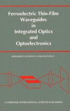 Ferroelectric Thin-Film Waveguides in Integrated Optics and Optoelectronics