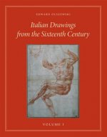 Italian Drawings from the Sixteenth Century