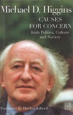 Causes for Concern: Irish Politics, Culture and Society